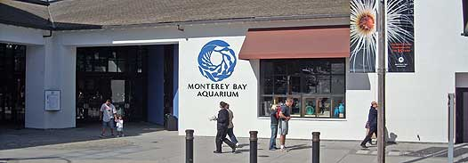 A gorgeous day in Monterey